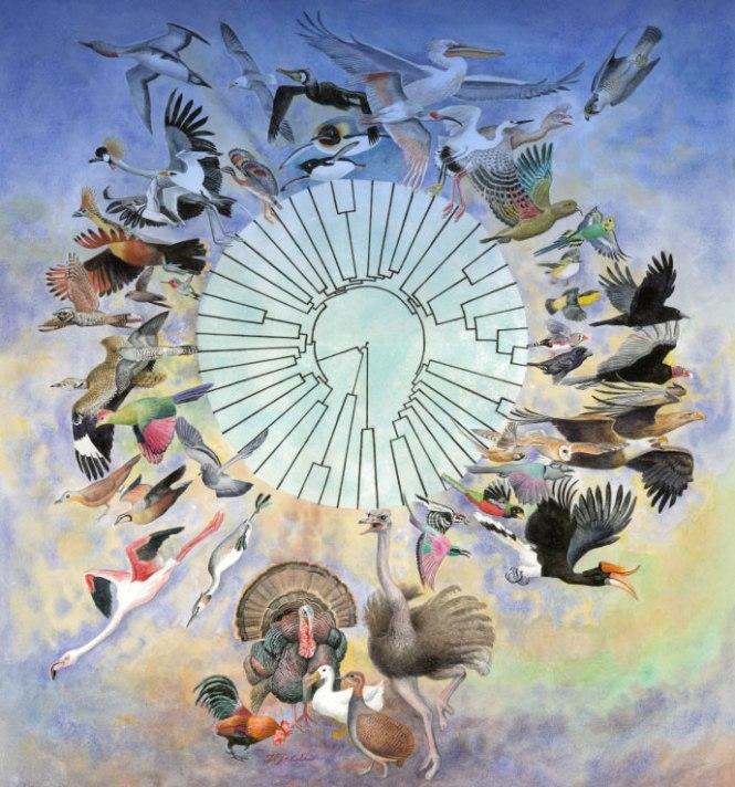 bird_figure.jpg