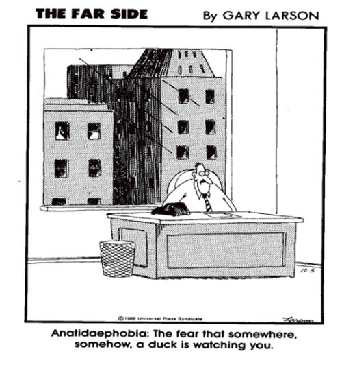 anatidaephobia.png