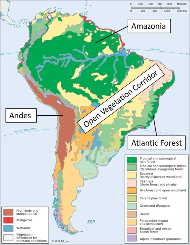 south america vegetation regions.jpg