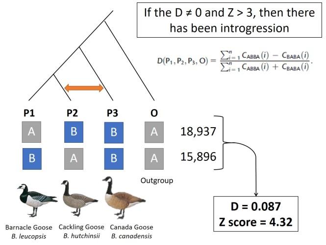 example_Dstat.jpg